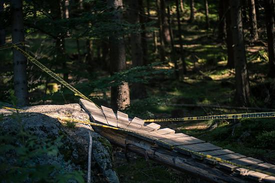 Der Trail war teilweise mit Northshore-Elementen gespickt