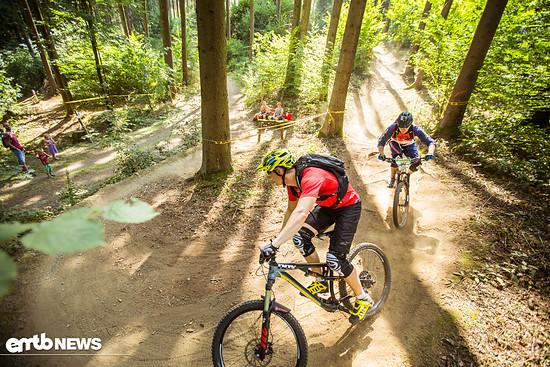 Tolle Trails am Dünsberg