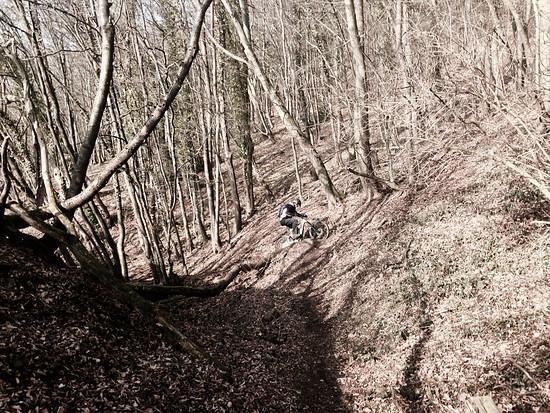 nie im uphillflow