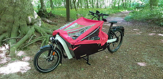 R&M Packster 80 S-Pedalec