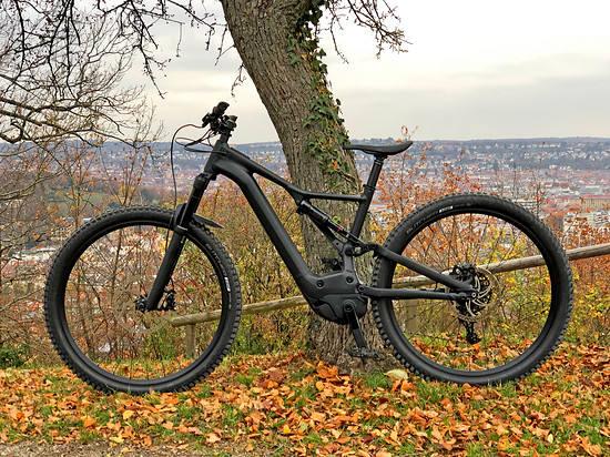 Specialized Turbo Levo 2019 custom