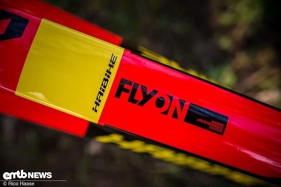 Haibike Flyon Nduro 10