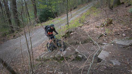 Naturtreppe Uphill