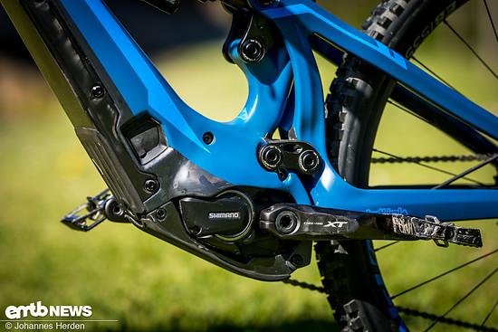 Im dargestellten Topmodell werkelt ein 70 Nm starker Shimano Steps E8000-Motor