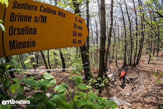 WES #2: Die Trails in Ascona-Locarno sind echte Leckerbissen!