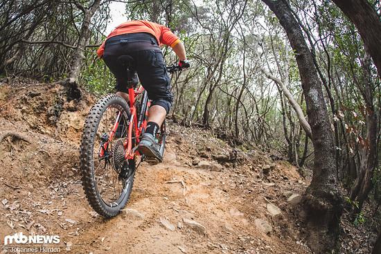 Uphill mit dem Rotwild R.E+FS