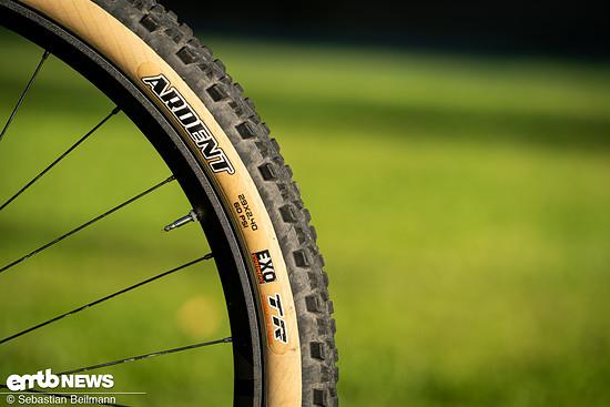 ... Zwar konnte man mit den Reifen auch mal über 25 km/h treten, auf dem Trail hätten wir uns jedoch vor allem am Vorderrad etwas mehr Grip gewünscht