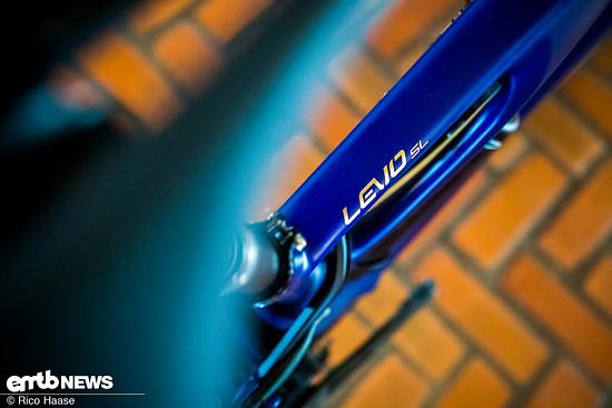 Specialized Levo SL Fonders Edition Neuheit 2020 DSC 2699
