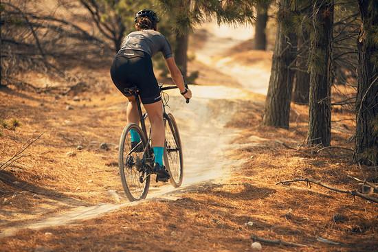 Auch moderate Trails sind mit diesem E-Bike problemlos befahrbar