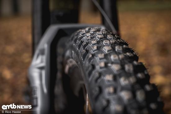 Pirelli Scorpion M+R DSC 4505