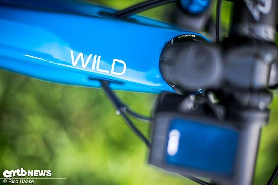 Orbea Wild FS im Test DSC 0140