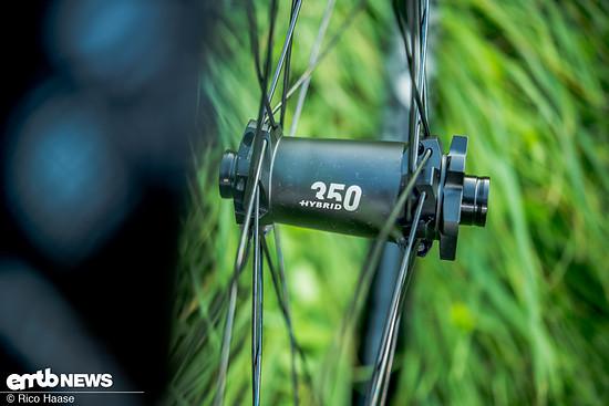 Im DT Swiss HX 1700 Spline sind 350er Naben verbaut.