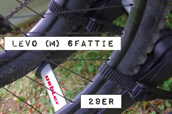 Levo (M) 6Fattie auf uebler X21